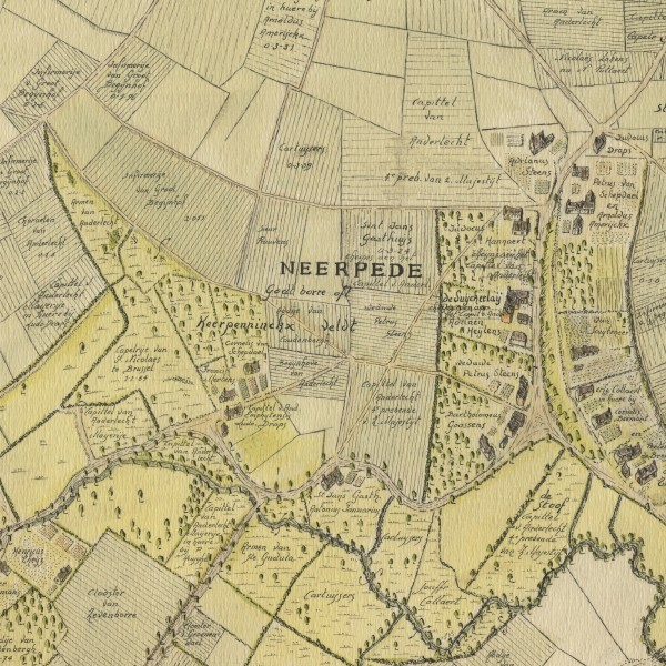 Etudes historiques pour Bruxelles Environnement
