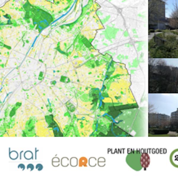 Renforcement du Réseau Ecologique Bruxellois – REB